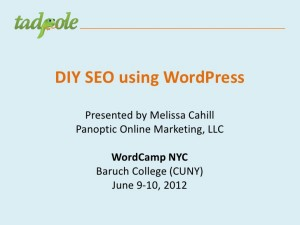 DIY SEO Using WordPress