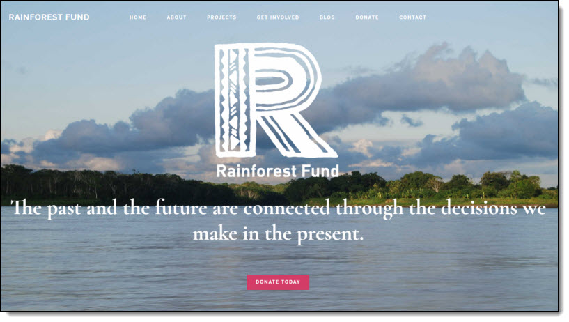 Rainforest Fund WordPress Website by Tadpole Collective