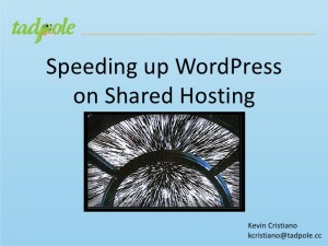 Speeding Up WordPress on Shared Hosting